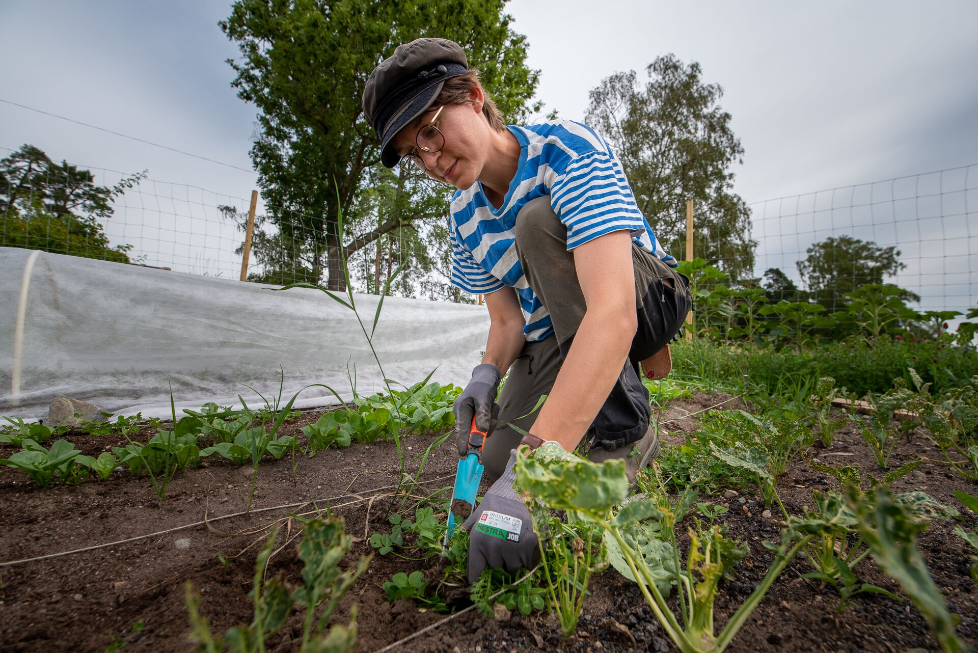Gröna Udden vill skapa gemenskap kring maten