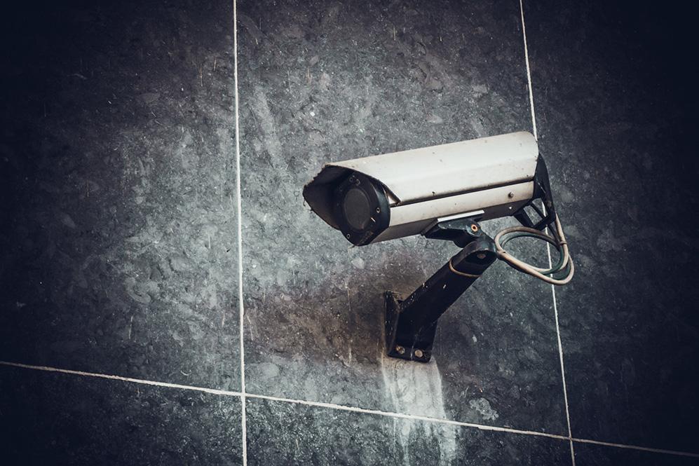 MP: Majoriteten argumenterar ohederligt om kamerors effekt