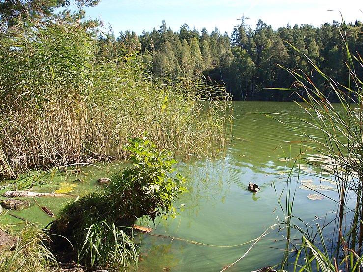 Lyft för Kottlasjön