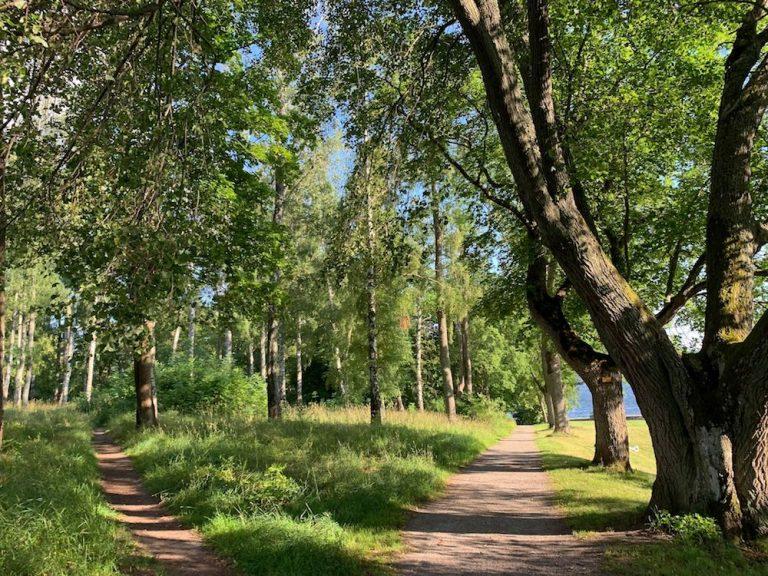Lidingös naturreservat